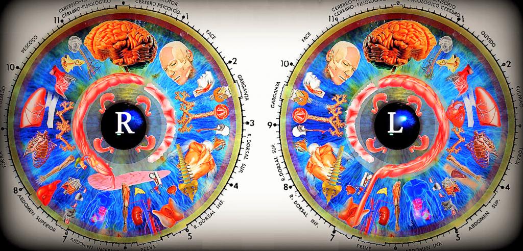 iridologija armandas kažerskas